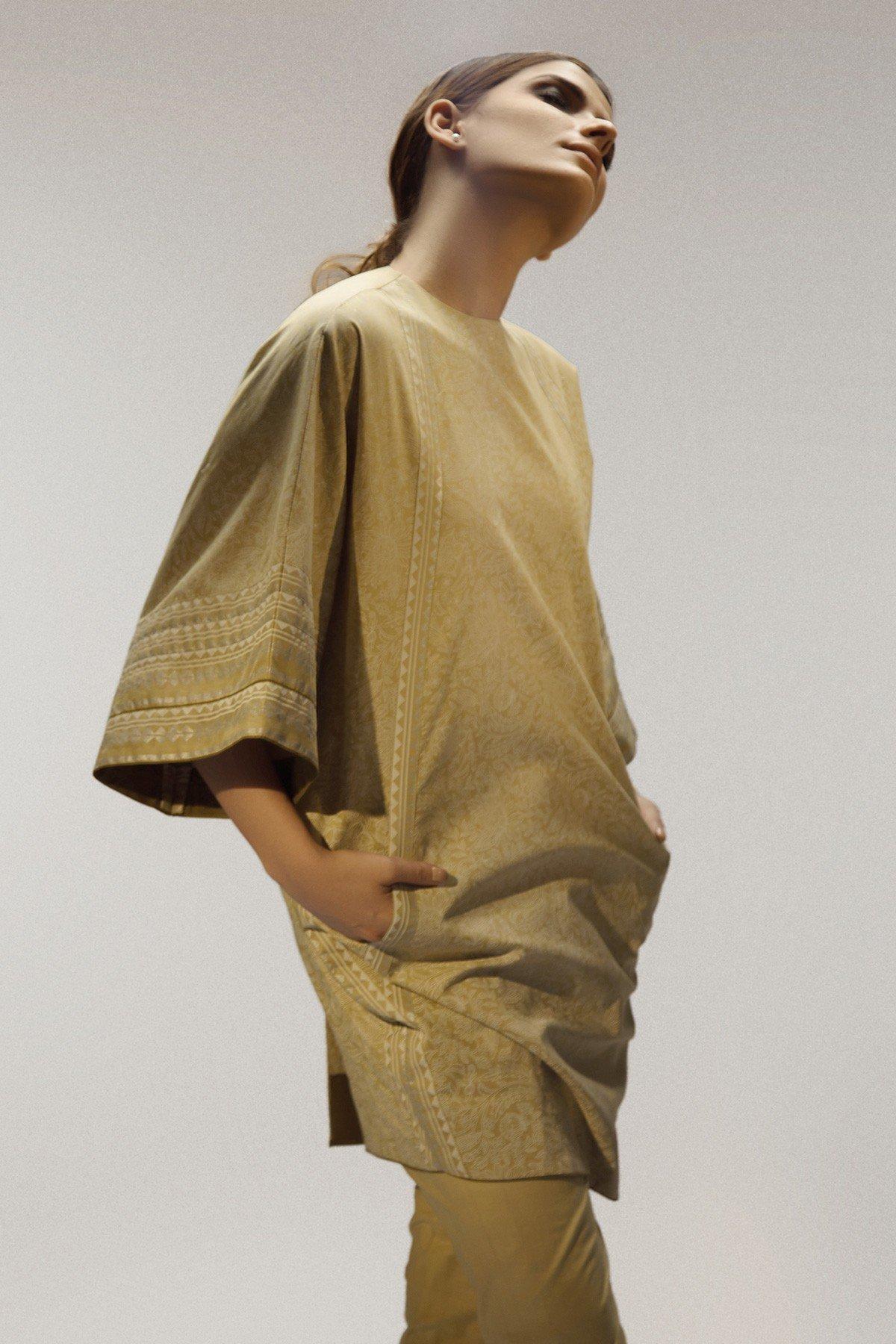 /2019/02/alkaram-studio-catalyst-collection-printed-cambric-shirt-image1.jpg