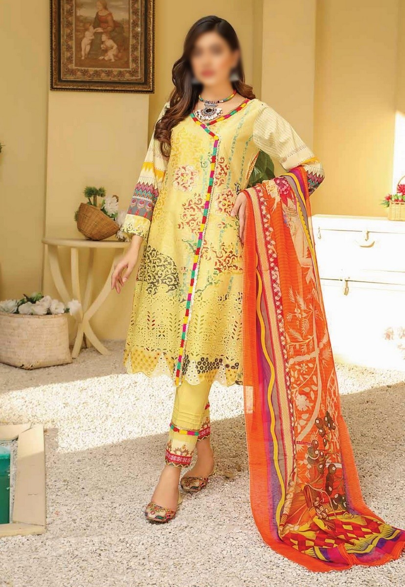 /2021/04/riaz-arts-chikankari-lawn-embroidered-collection-d-10-image1.jpeg